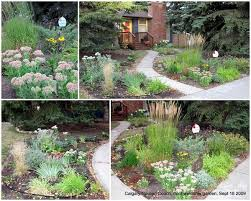 Small Picture Plain Garden Design Zone 3 Plan In Zones 39 G On Ideas