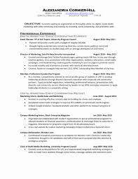 Social Media Resume Example Social Media Resume Sample Orgullolgbt