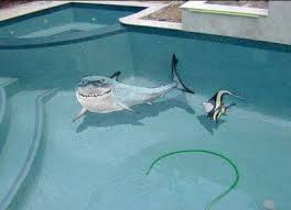 cool swimming pools. Simple Swimming Collect This Idea Cool Swimming Pools Inside S