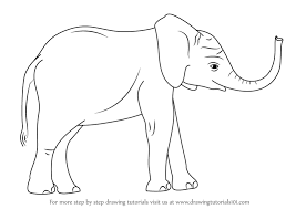 baby elephant drawings. Unique Elephant How To Draw A Baby Elephant To Drawings T