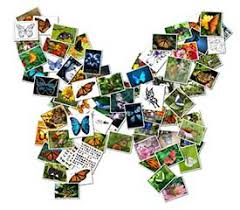 Example Of A Collage Shape Collage Online Free Automatic Photo Collage Maker