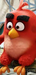 1440x2960 Red The Angry Birds Samsung Galaxy Note 9,8, S9,S8,S8+ QHD HD 4k  Wallpapers, Images, Backgrounds, Photos and Pictures