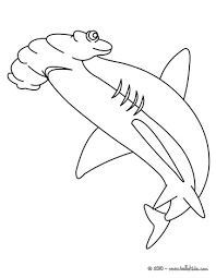 Small Picture Hammerhead shark coloring page Summer Camp Sea Pinterest