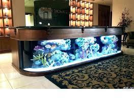furniture for fish tank. Office Desk Fish Tank Brilliant On Furniture Aquarium Ideas 6 Furniture For Fish Tank U