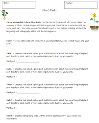 Plant Worksheets For Third Grade Worksheets for all | Download and ...