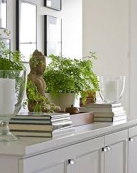 Feng shui home elements plants Money Feng Shui Element Wood Conscious Lifestyle Magazine Beginners Guide To Using Feng Shui Colors In Decorating