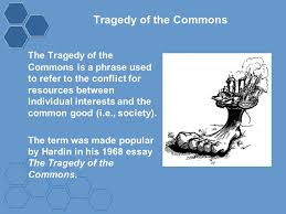 tragedy of the commons the tragedy of the commons is a phrase used 1 tragedy of the commons