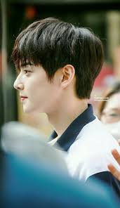 Fabulous Korean Hairstyle Male For 2019 Cha Eun Woo My