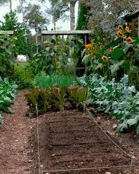 how to lay out a garden. How To Lay Out A Garden