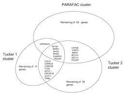 Venn Diagram Techniques Venn Diagram Of K Means Clustering Results For All Three