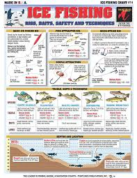 How To Identify Freshwater Species Shad Perch Walleye