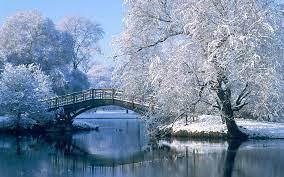 Winter scenery, Winter landscape ...
