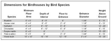 Sparrow Birdhouse Hole Size Chart Bird Feeder Hole Size Hole Photos In The Word