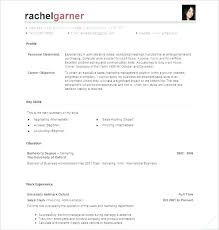 Best Resume Builder Online Free Professional Resume Builder Service