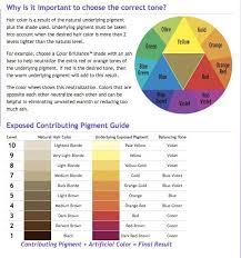 Underlying Pigment In 2019 Hair Painting Hair Color Hair