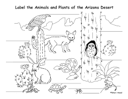 Small Picture Desert Coloring Pages GetColoringPagescom