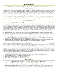 Credit Collections Manager Resume Sample