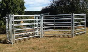 Cattle Yard Designs 10 Head Cattle Yards Premium Stock Yards New Zealand