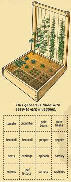 Small Picture Best 25 Starting a vegetable garden ideas on Pinterest Starting