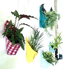 plant wall hangers indoor plant hangers wall mount wall hanging plant colorful cloth plant holder inspiration plant wall