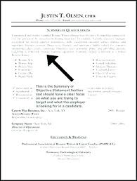 Example Of Resume Summary Gorgeous Resume Summary Examples Resume Summaries Examples Fabulous Resume