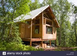 remote off grid alaskan cabin under construction matka susitna alaska usa