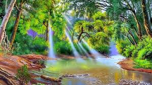 nature river trees with green leaves sun rays art hd wallpaper on art nature wallpaper with nature river trees with green leaves sun rays art hd wallpaper