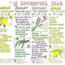 Essential Oils Chart Liz Cook Charts