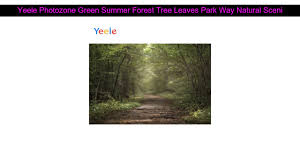 <b>Yeele Photozone</b> Green Summer Forest <b>Tree</b> Leaves Park Way ...