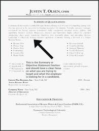 Resume Branding Statement Examples Beauteous Summary Statement Resume Example Of Inspirational Samples Examples