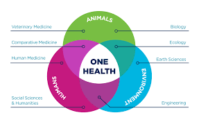 My Ucd Chart Unique One Health Collaborations Uc Davis