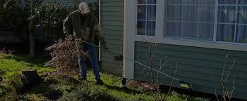pest control eugene. Wonderful Eugene WELCOME TO BUG ZAPPER PEST CONTROL On Pest Control Eugene C
