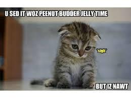 SAD KITTY MEME :'( remix on Scratch via Relatably.com