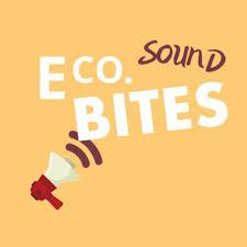 E Co. Sound bites