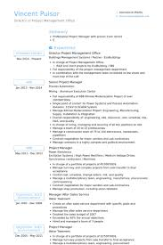 Director Project Management Office Resume samples