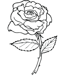 coloring pages of roses coloring book roses rose coloring book and rose a rose coloring picture