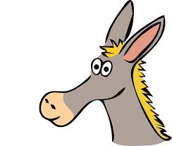 Image result for donkey