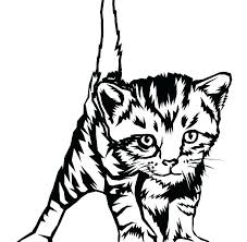 Cute Cat Coloring Pages Cute Cat Coloring Pages S Kitty Realistic