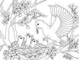 Small Picture 56 best Coloring Pages for Grown Ups Animals images on Pinterest