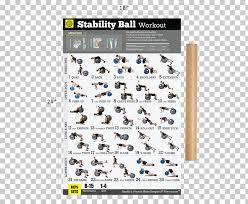 Dumbbell Bodyweight Exercise Weight Training Exercise