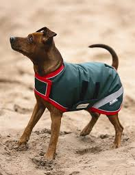 rambo waterproof dog rugs