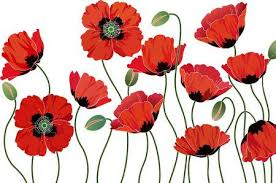 Image result for clipart poppy remembrance day