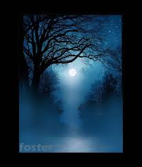 tree art landscape moonlight painting blue night limbs print twisted limbs full moon night sky blue mist art tangled branches