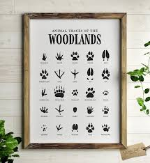 Simply lovely in every way, peel and stick animal tracks wall decals in your little one's space. Animal Tracks Print Printable Wall Art Woodland Nursery Etsy Animal Tracks Wall Printables Woodland Nursery Decor