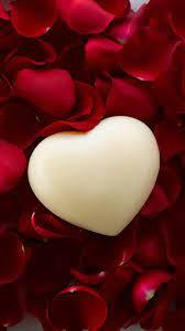 White heart rose petals art