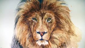 lion drawing color.  Lion For Lion Drawing Color O