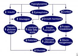 Low Blood Sugar Levels Chart By Age Neonatal Hypoglycemia Practice Essentials Background Etiology
