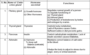 Stages Of Puberty In Males Chart Cbse 8 Science Cbse Reaching The Age Of Adolescence Free