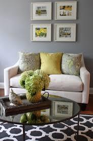 Yellow Living Room Walls Ideas Decorating Room Color Scheme Ideas Yellow Themed Living Room