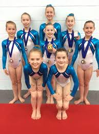 Success puts a spring in Wiltshire School of Gymnastics' step ...